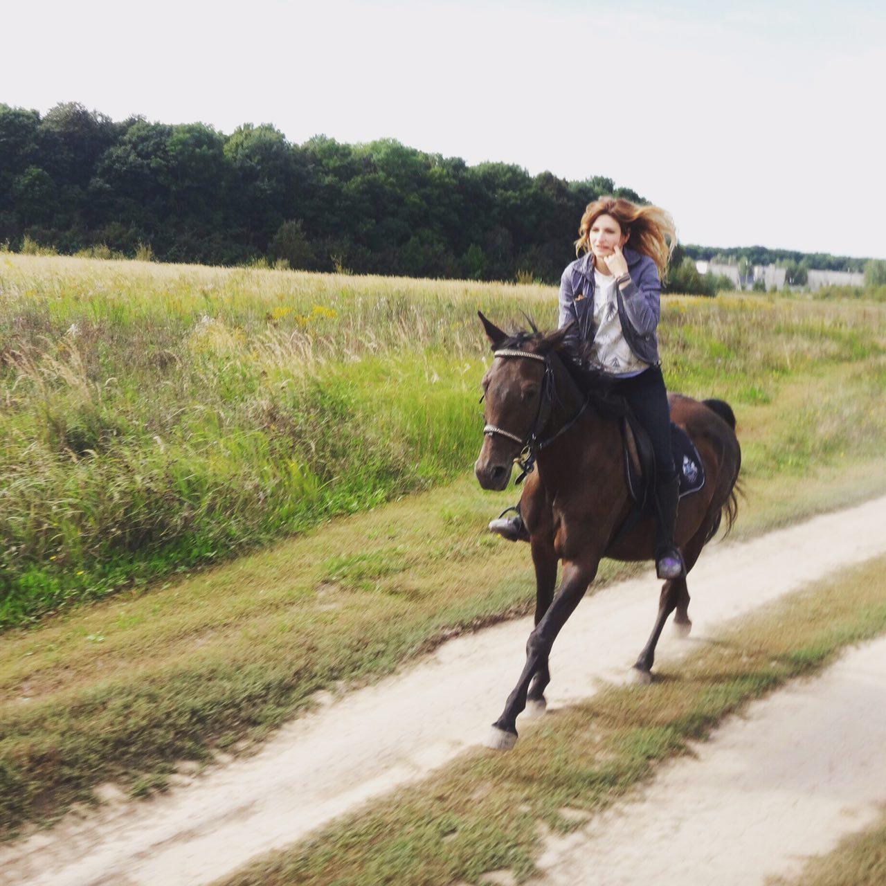 Что снится лошади которую не любят